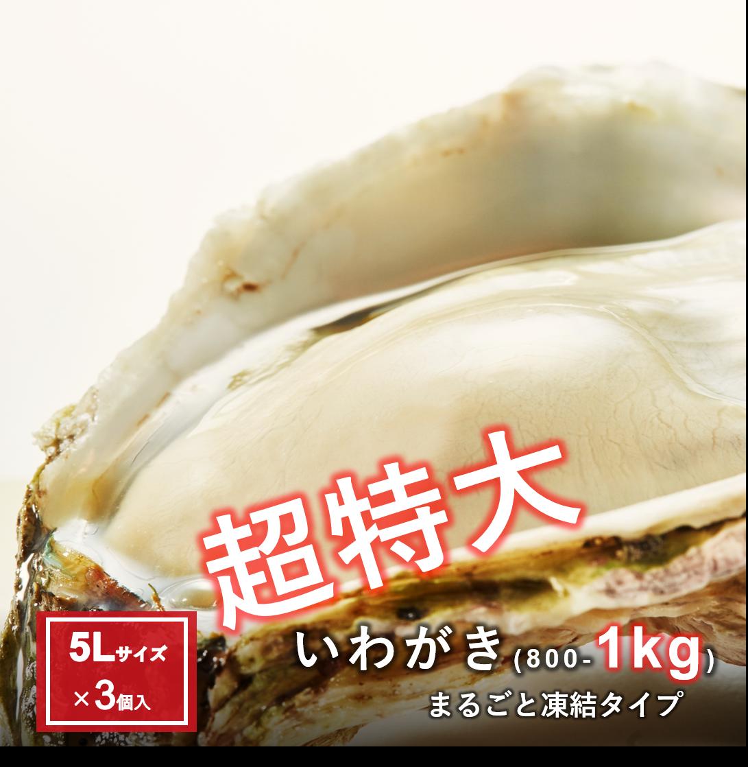 【おまけ岩牡蠣+S1個】超特大いわがき丸ごと凍結5Lサイズ3個セット
