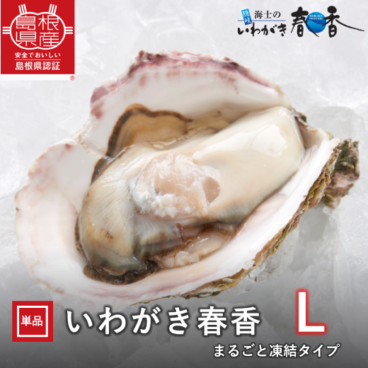 [送料無料対象]いわがき春香丸ごと凍結Lサイズ