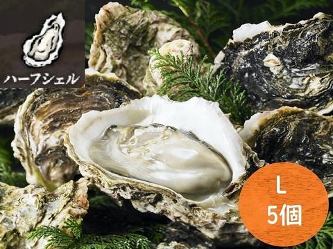 いわがき春香ハーフシェルLサイズ5個セット<水産物応援商品>