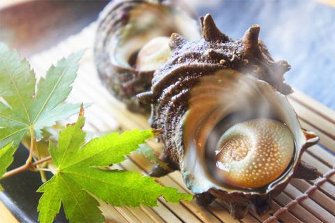 さざえ壺焼き(醤油味)<水産物応援商品>